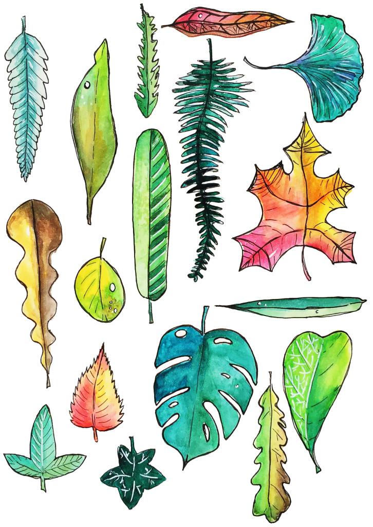 leaves_printable_OlyaSchmidt